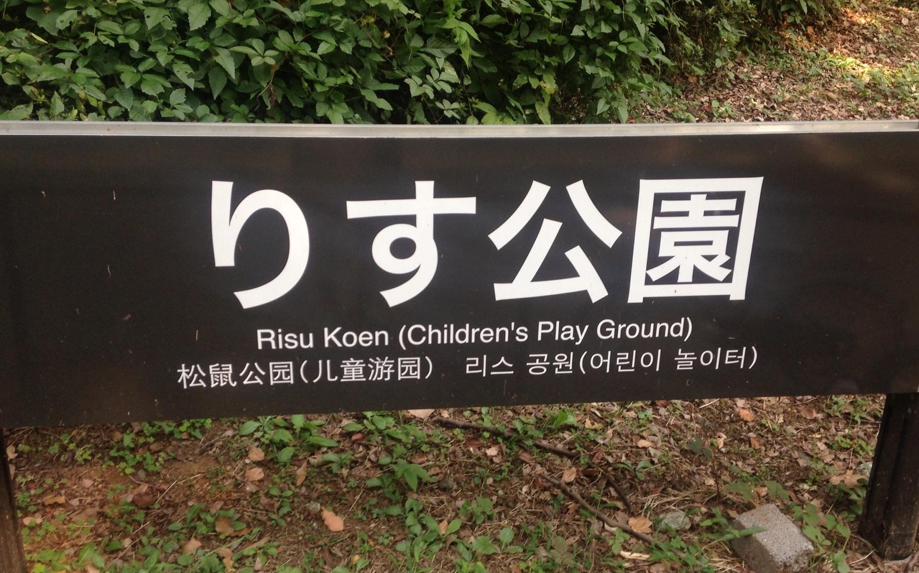 駒沢公園のりす公園