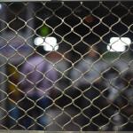 【インド・ムンバイ旅/マヒム少年】#8 車内から外の様子(Western Railway)