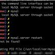 これ。「Can't connect to local MySQL server through socket '/tmp/mysql.sock' (2)」と「The server quit without updating PID file 」