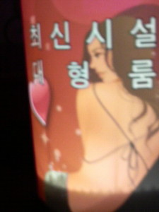 韓国のカラオケの看板