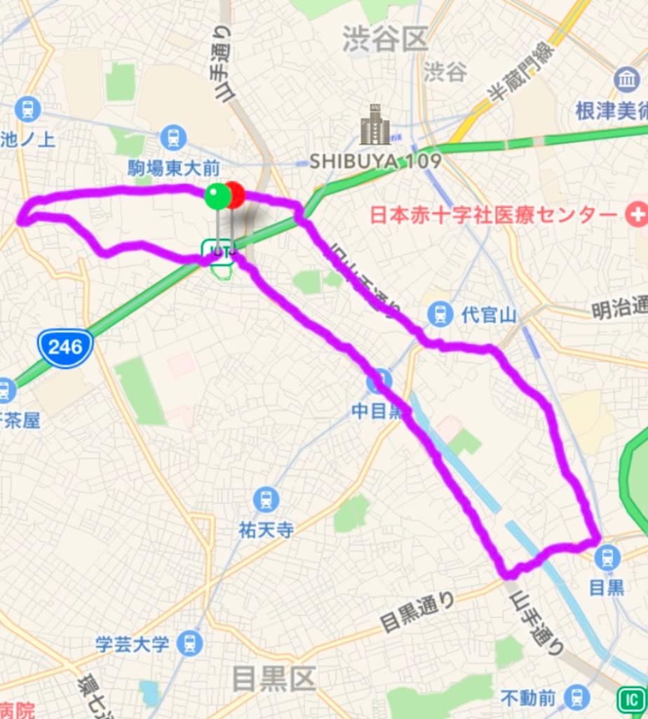 【走るよ】2017/2/19 第45回 スポニチ皇居Run&Walk(シリアス20km)までの話】今日の記録