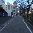 【わかりやすい!!】池尻大橋~神泉~中目黒ランニング ジョギング コース(6.8km~13km)