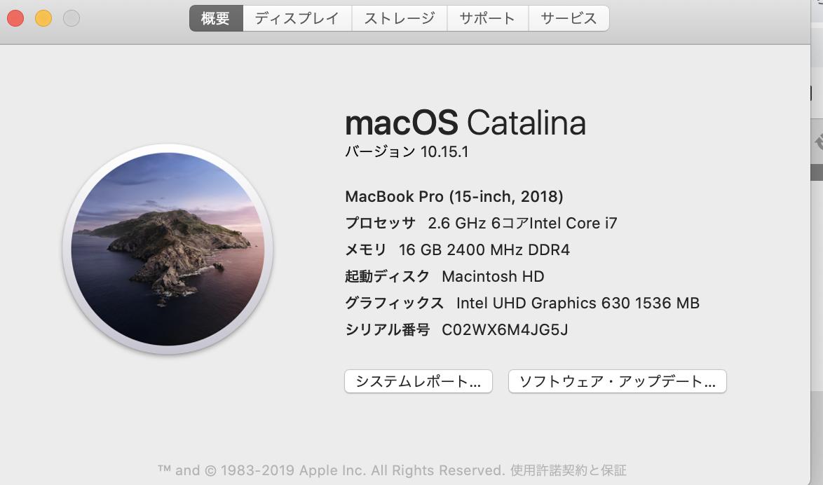 """画像は10.15.1です。アップデートしてしまったので。あなたはおそらく10.15のはずです。【解決!Mac/Catalina10.15】こないだまで解凍できてなのに!xxを""""ダウンロード""""に展開できません。(エラー22- 引数が無効です。)"""